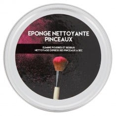 Eponge Nettoyante Pinceaux