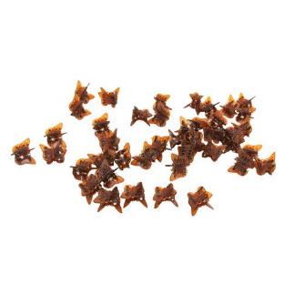 42 mini Pinces à cheveux Papillon Écaille